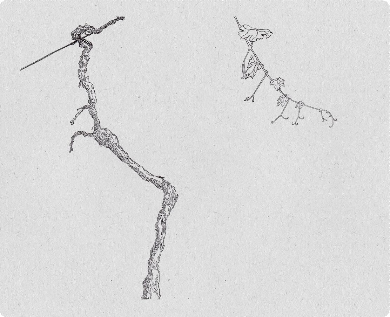 desenhos_2014_009
